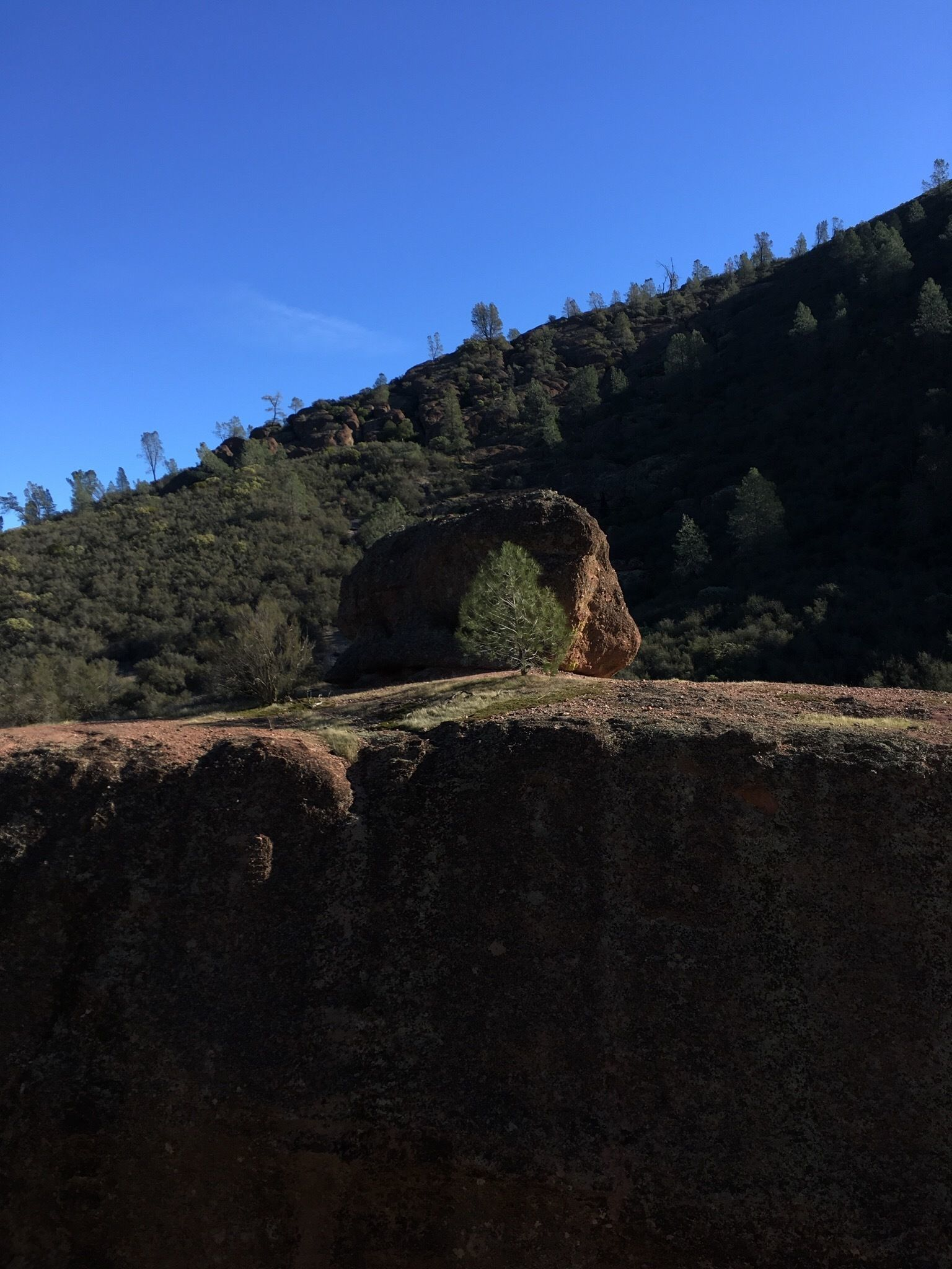 best trails in pinnacles national park