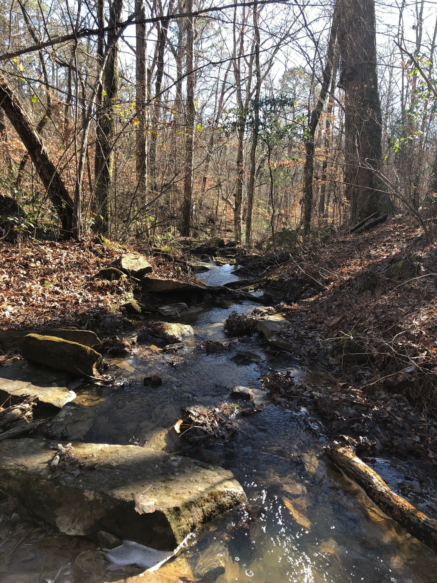 best waterfall trails in mississippi