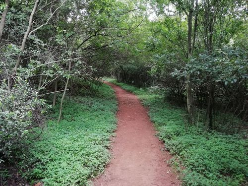 Moreleta Kloof Nature Reserve