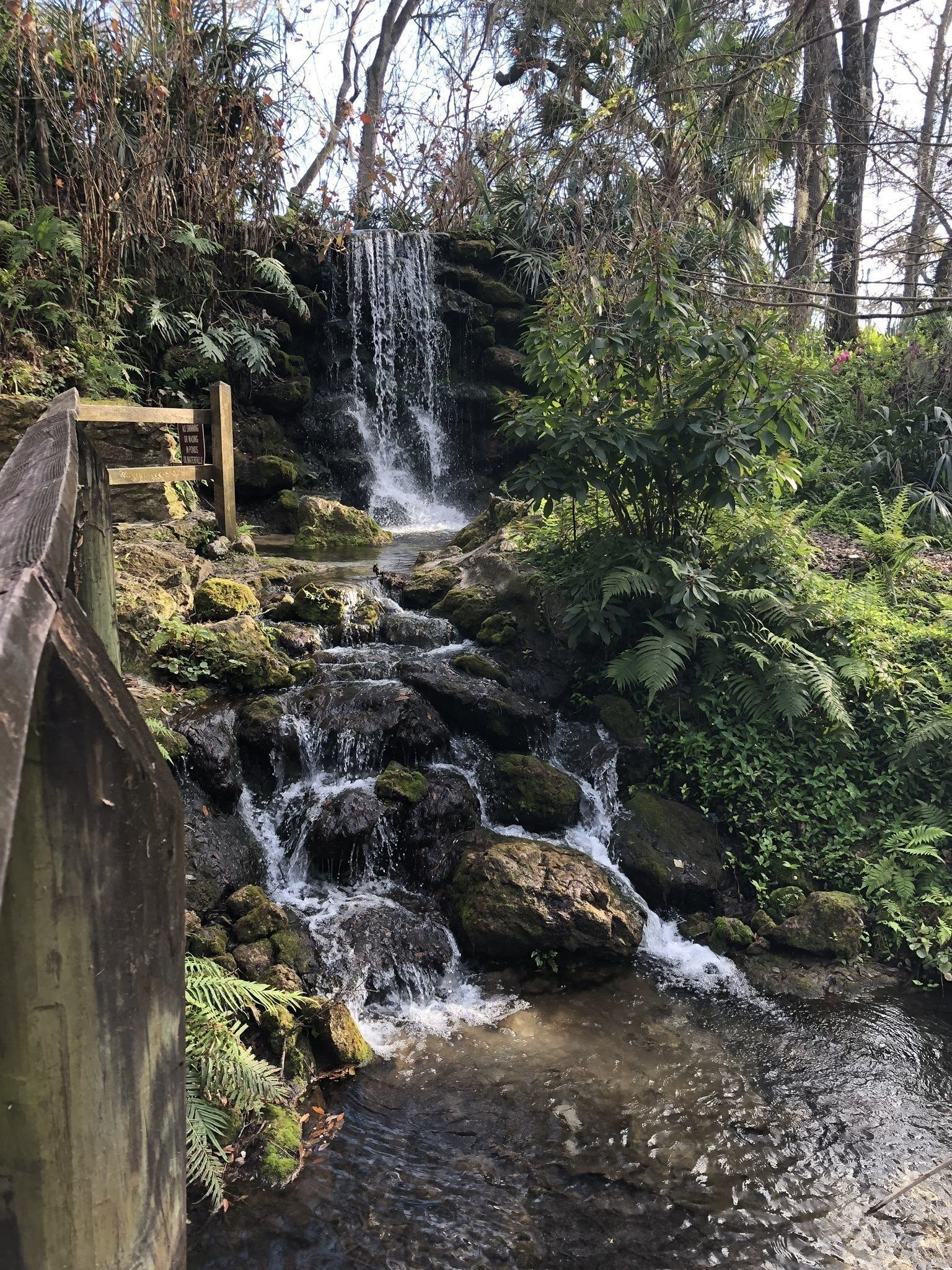 Best Trails in Rainbow Springs State Park - Florida | AllTrails