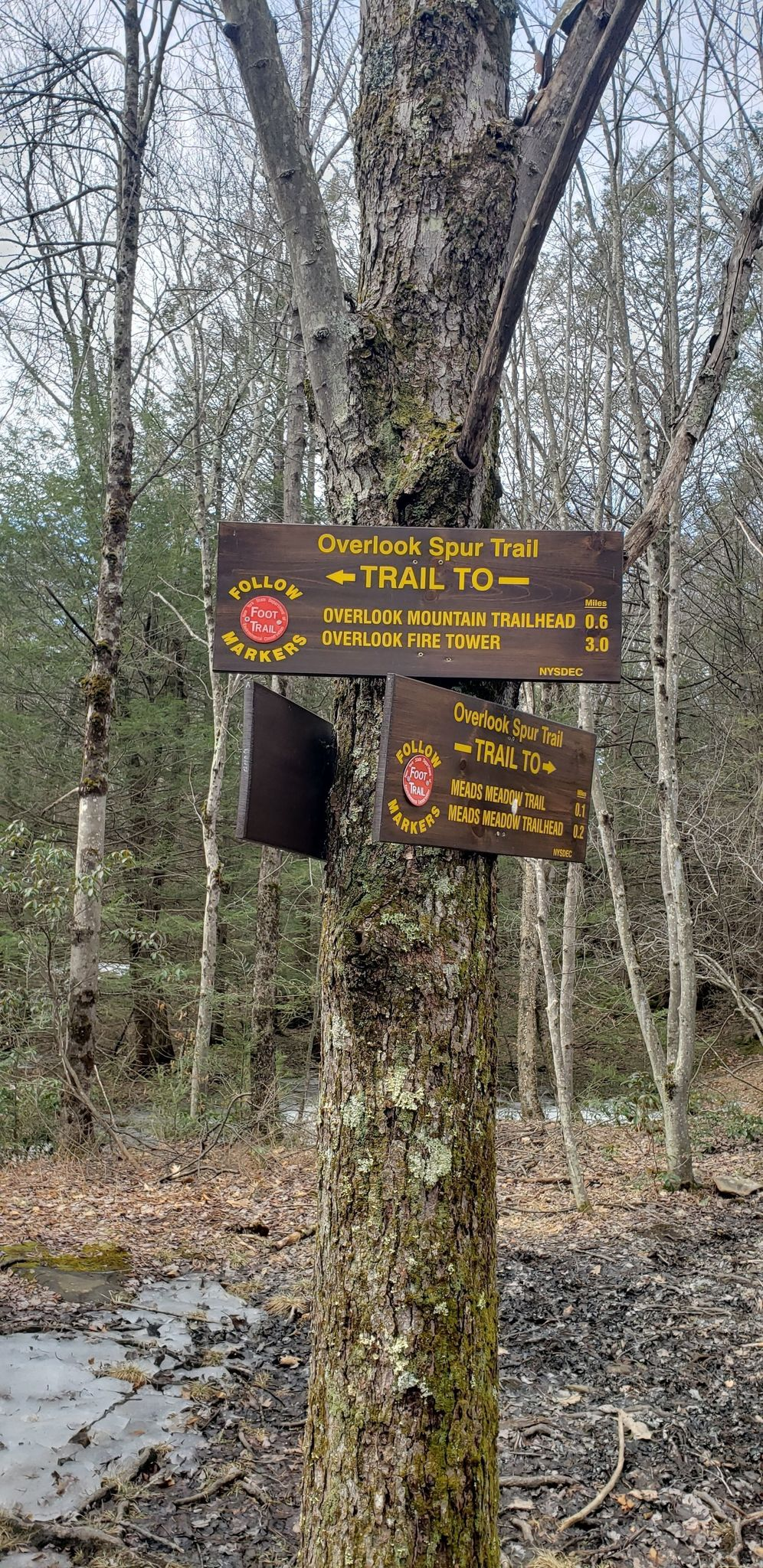 We Cannot Continue To Overlook High >> Overlook Mountain Trail New York Alltrails