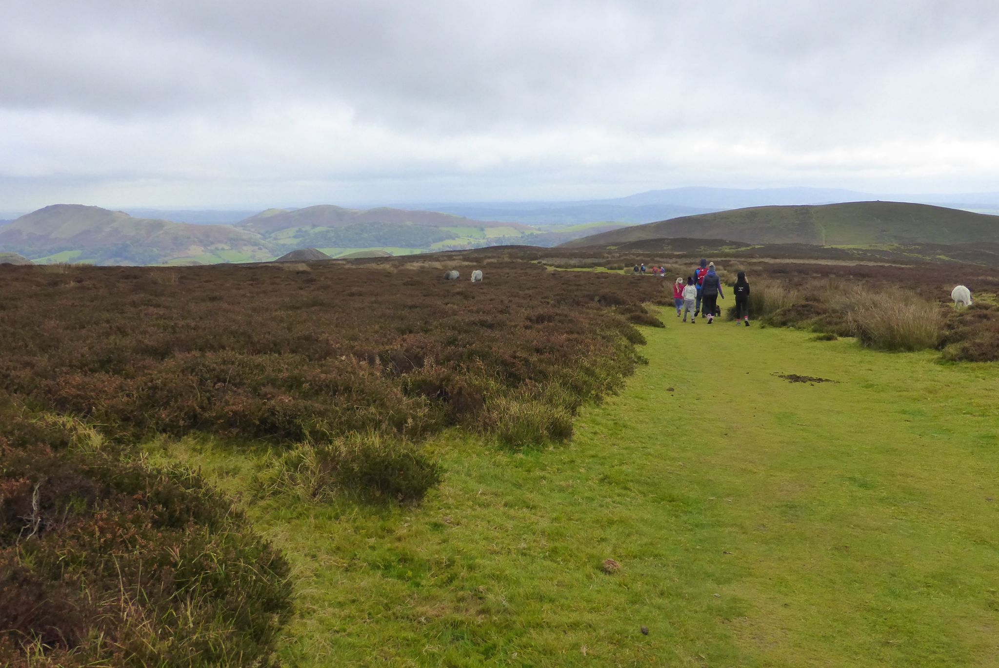 Carding Mill Valley and the Long Mynd - Shropshire, England