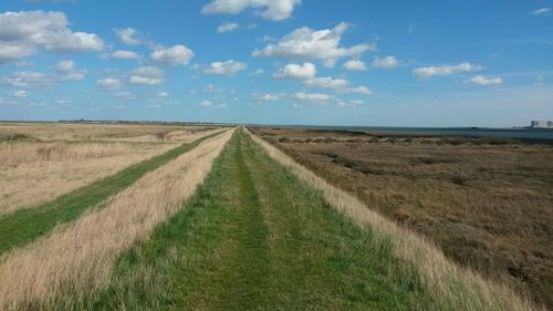 Tollesbury Wick Marshes