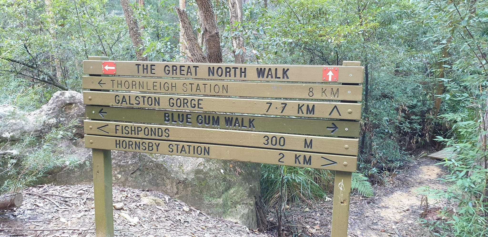 Great North Walk: Thornleigh to Hornsby - New South Wales