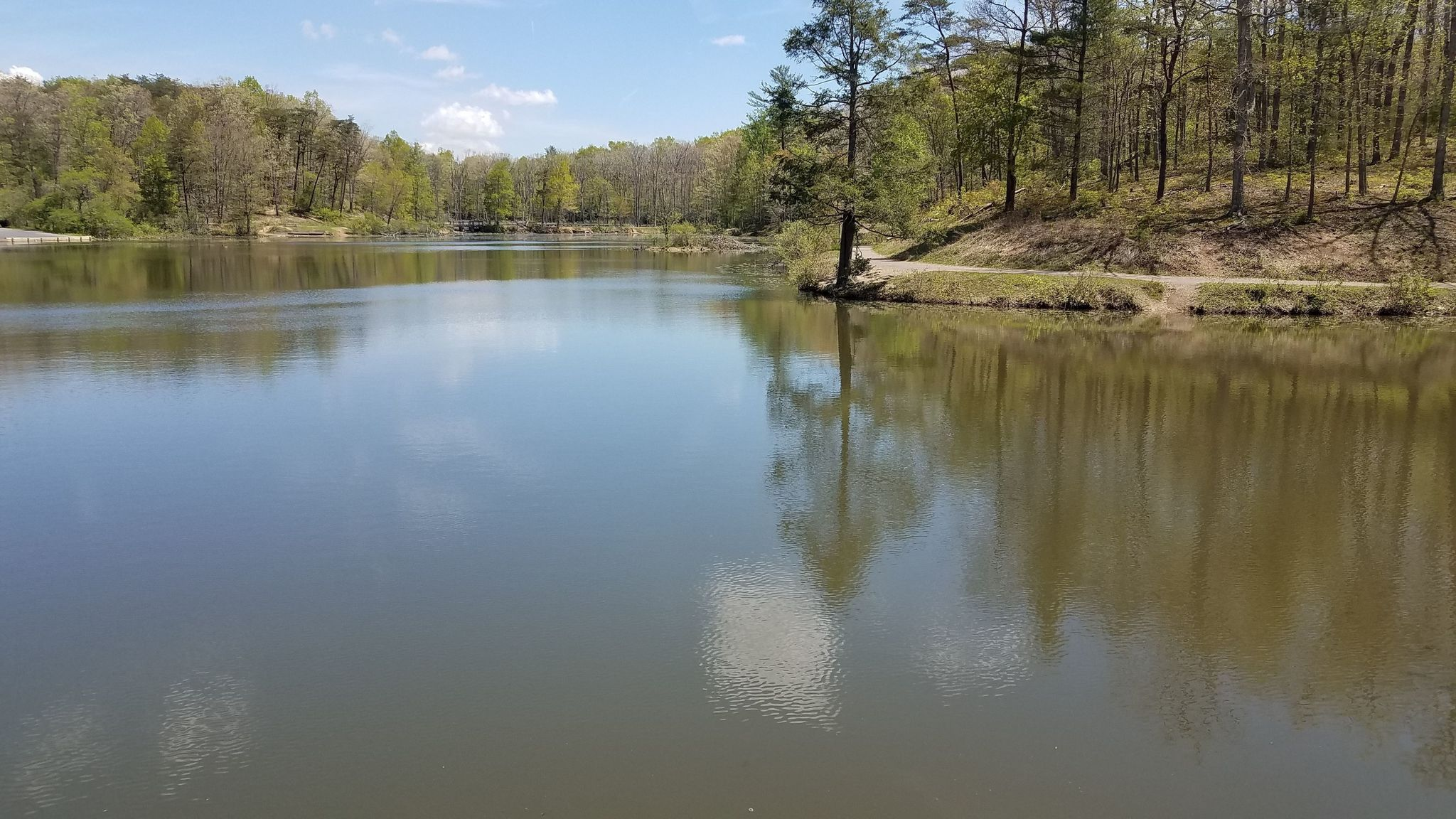 Best Lake Trails In George Washington And Jefferson