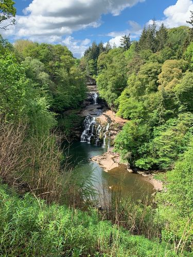 Clyde Valley Woodlands National Nature Reserve