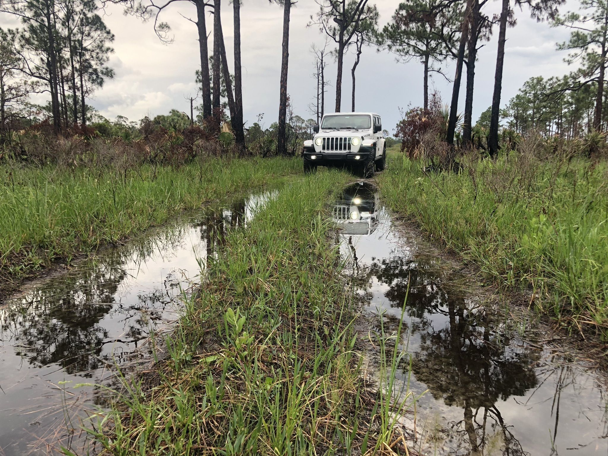 Best Off Road Driving Trails in Florida | AllTrails