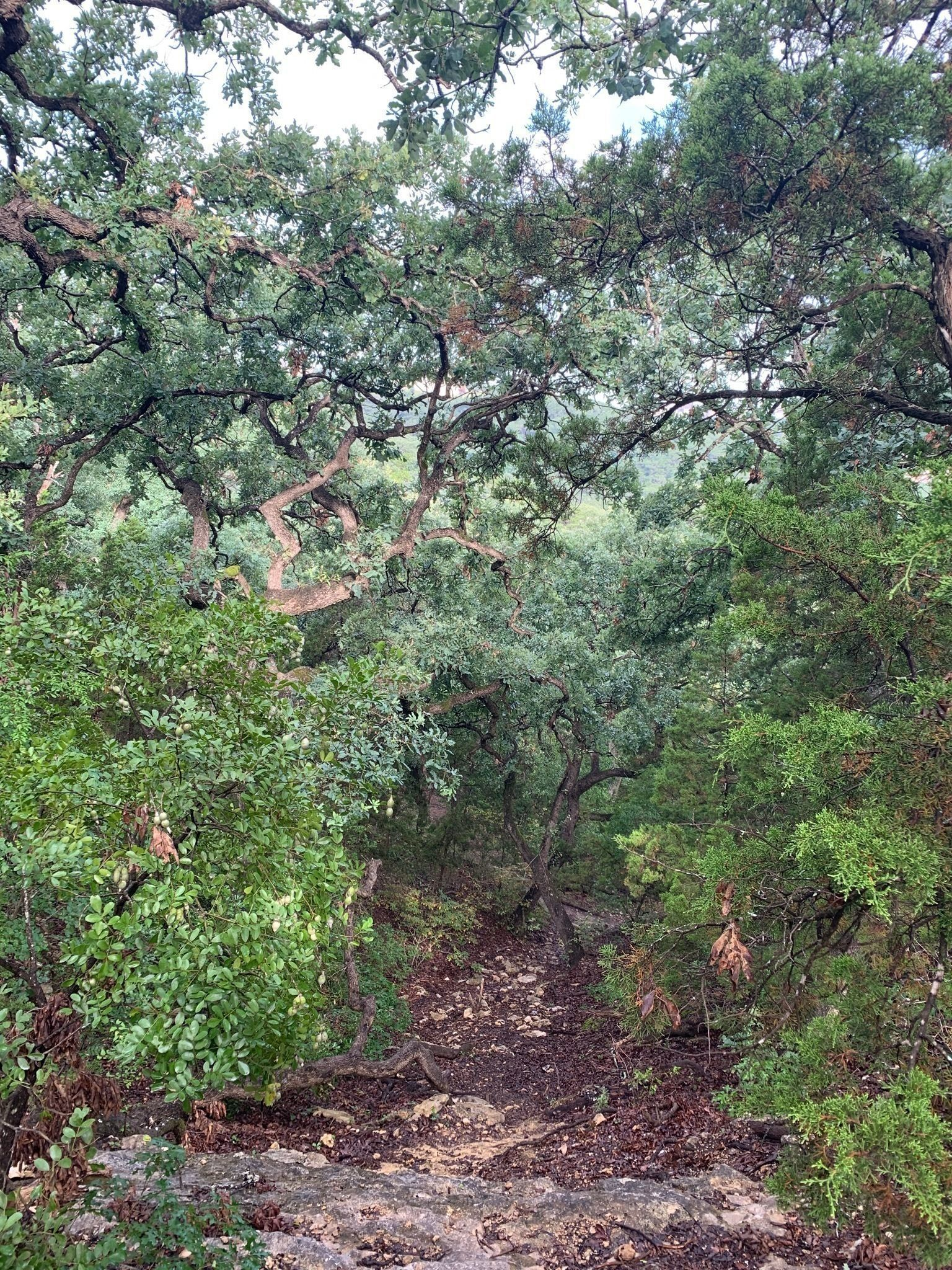 Best Partially Paved Trails Near San Antonio Texas