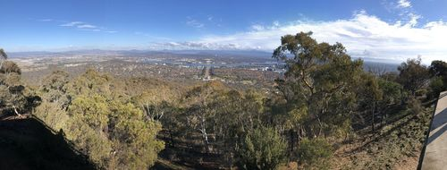 Mount Ainslie Nature Reserve