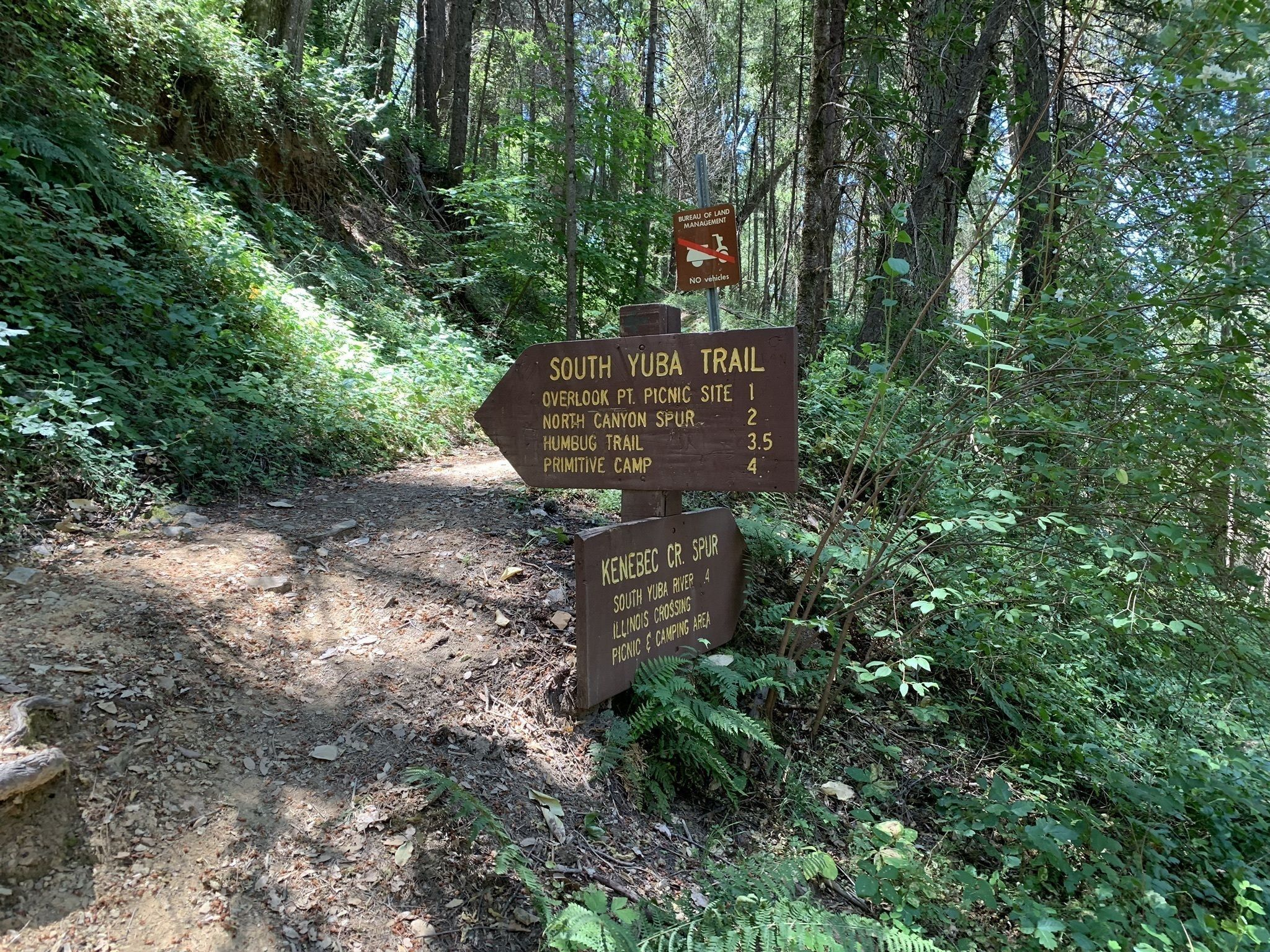 Best Trails in Malakoff Diggins State Historic Park
