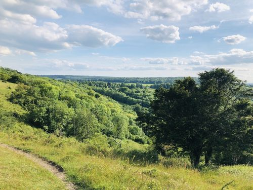 Chiltern Hills Area of Outstanding Natural Beauty