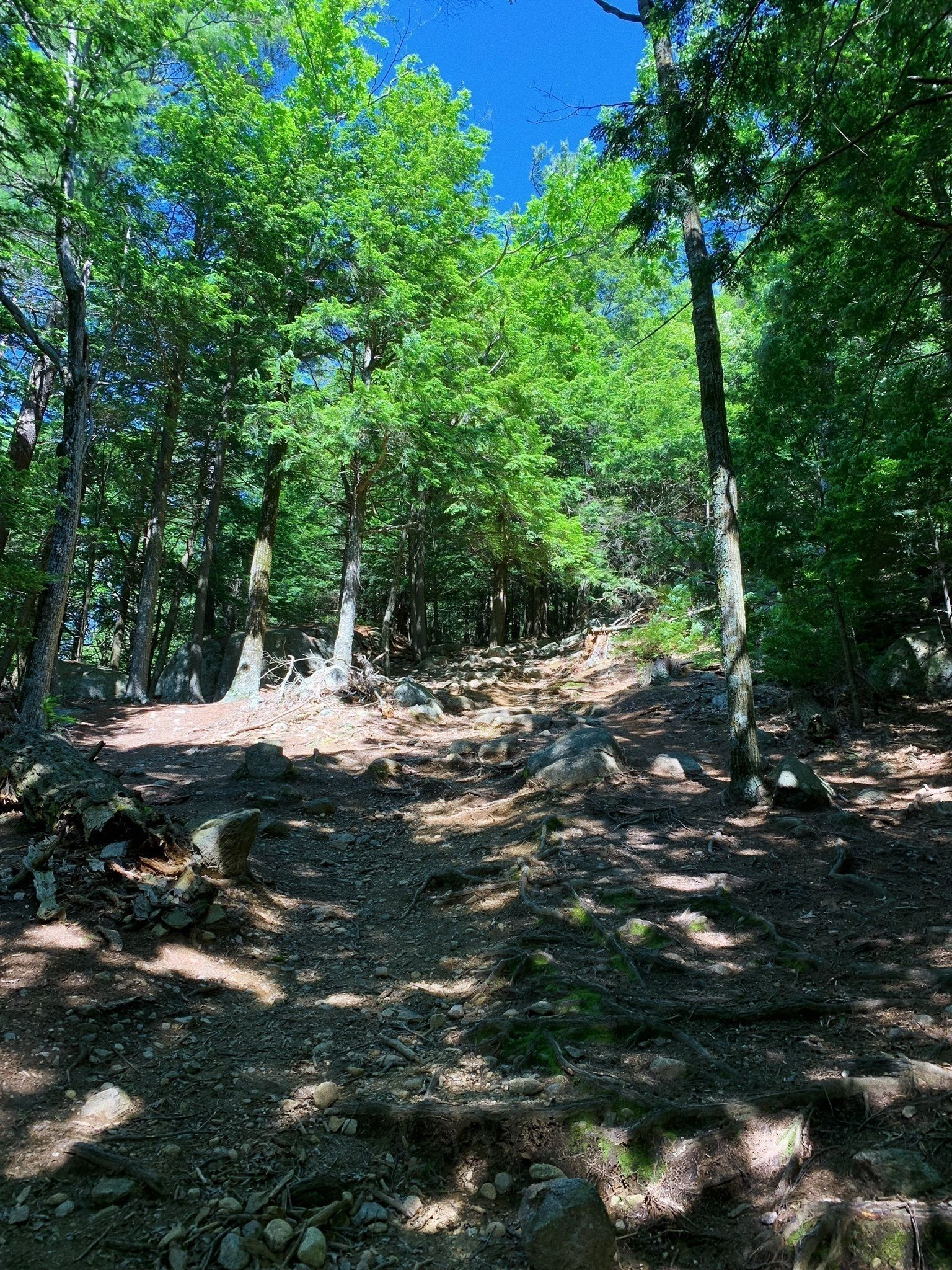 north mountain and boulder trail loop