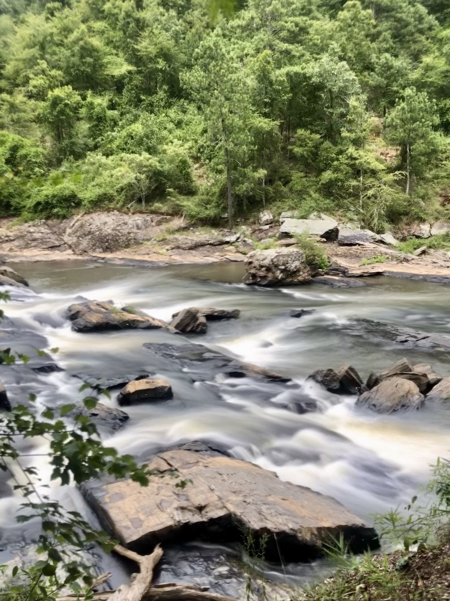 Best Trail Running Trails in Sweetwater Creek State Park