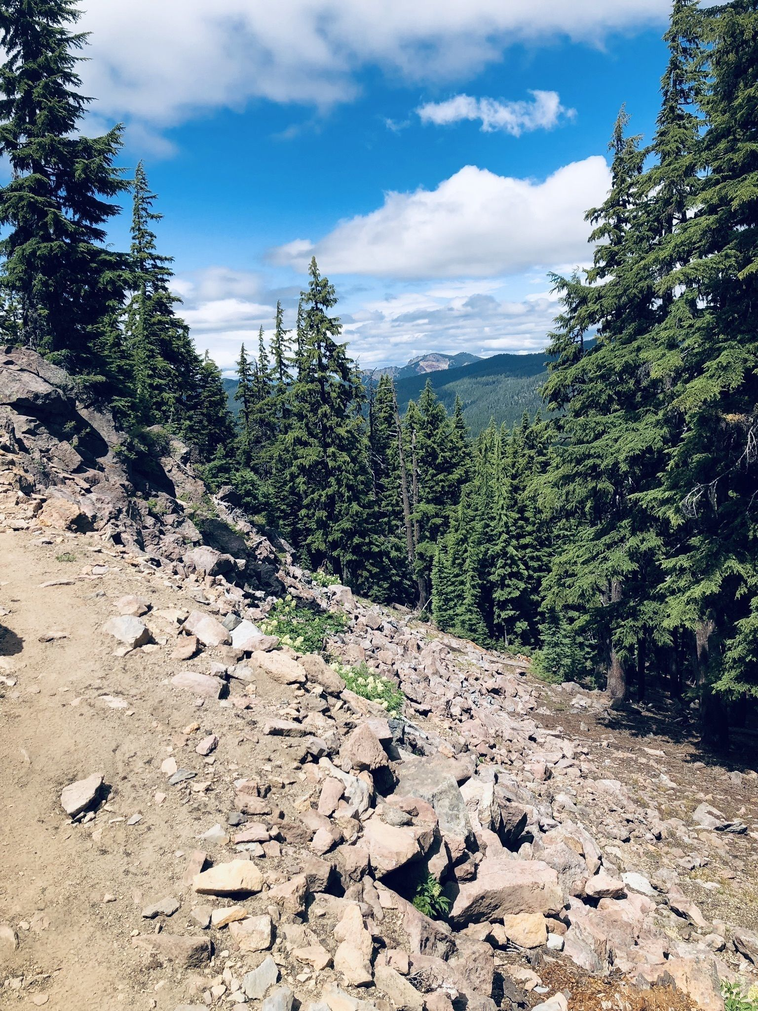 PCT: OR Section D - Highway 138 to Highway 58 (Willamette