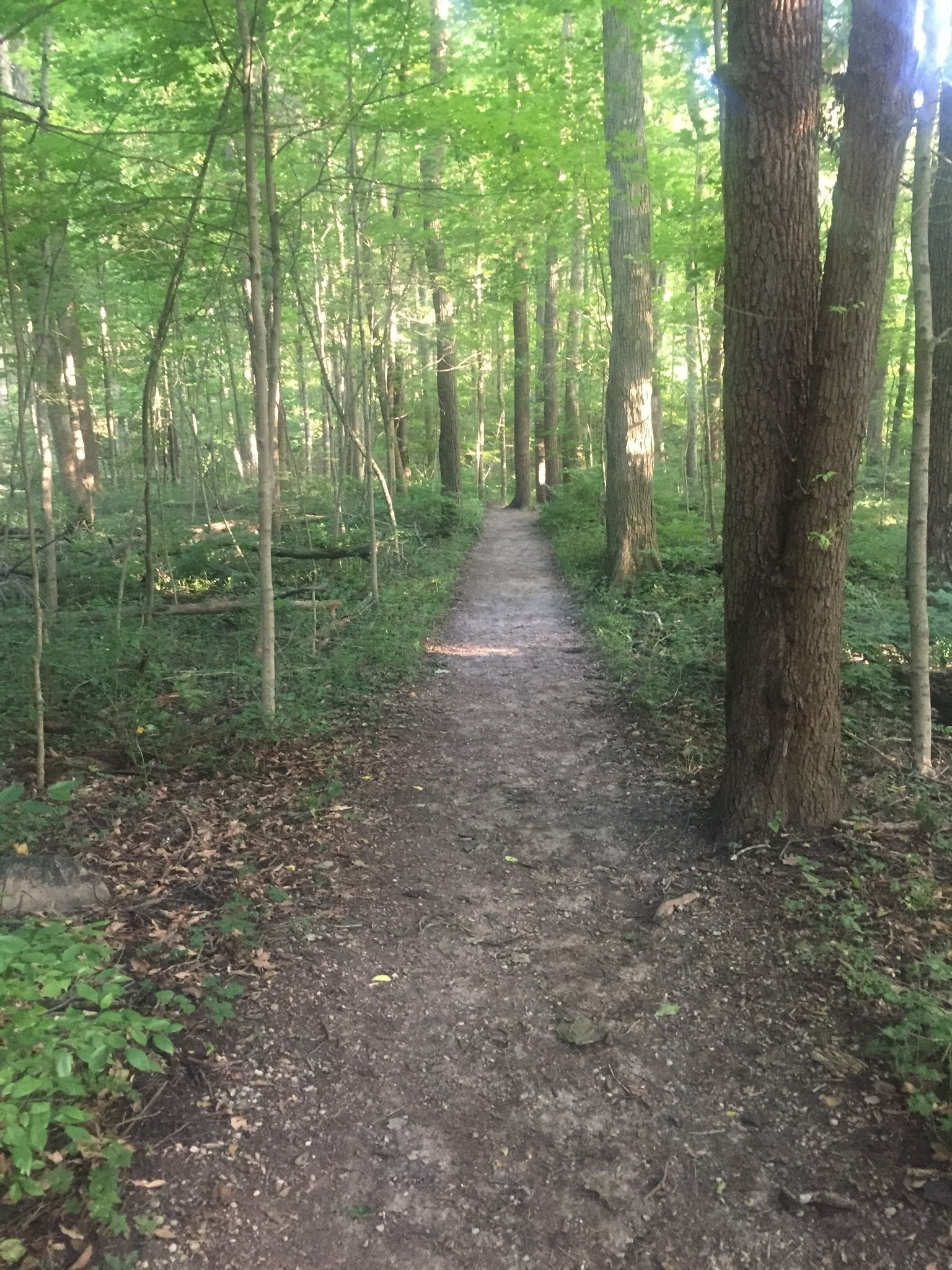 Best Trails near Indianapolis, Indiana   AllTrails