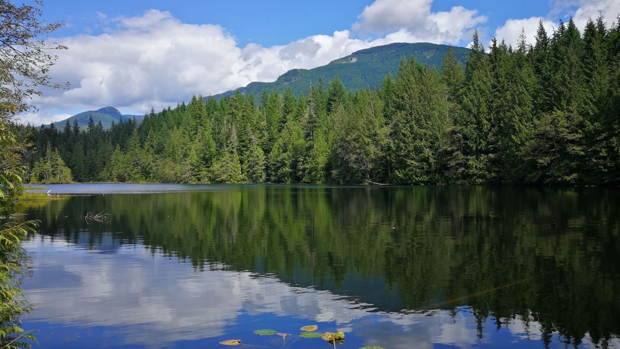Best Trails in Alice Lake Provincial Park - British Columbia, Canada