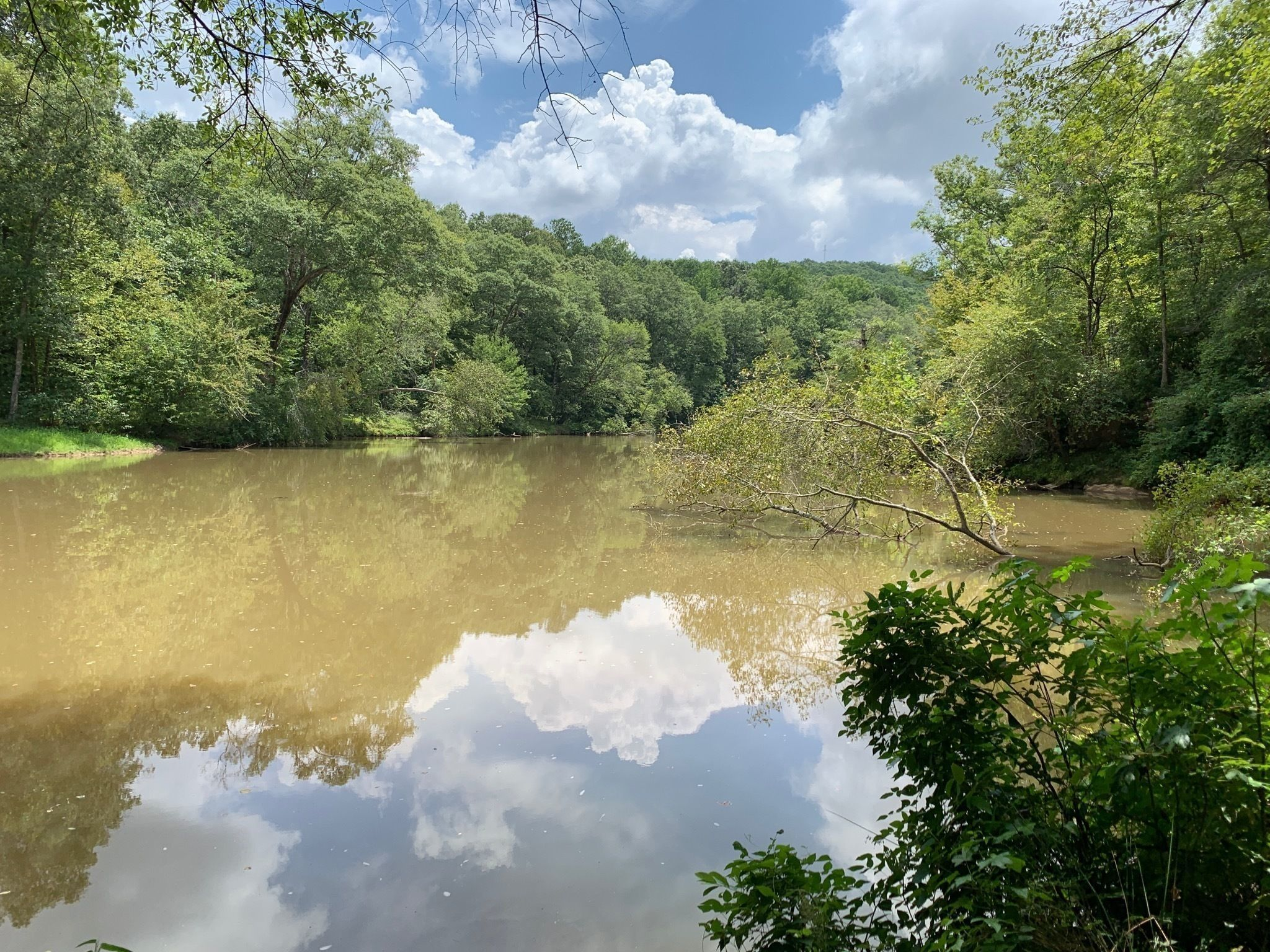 Best Trails in Sweetwater Creek State Park - Georgia | AllTrails