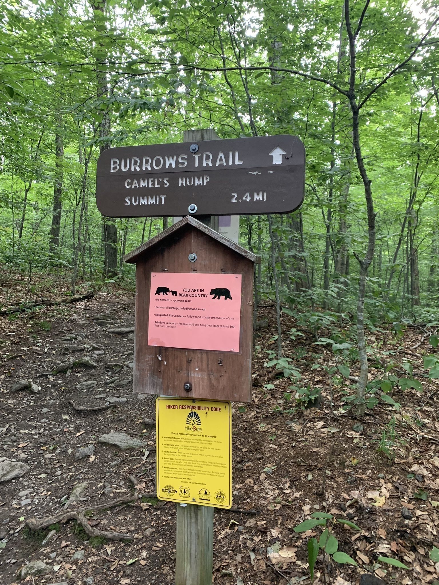 Best Trails in Camels Hump State Park - Vermont | AllTrails