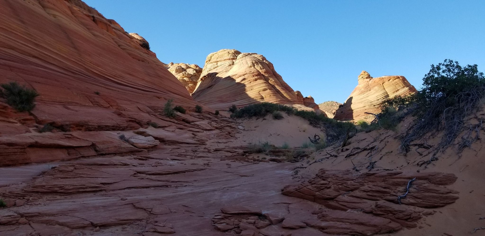 The Wave Trail - Utah | AllTrails