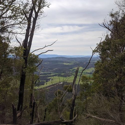 Kinglake National Park